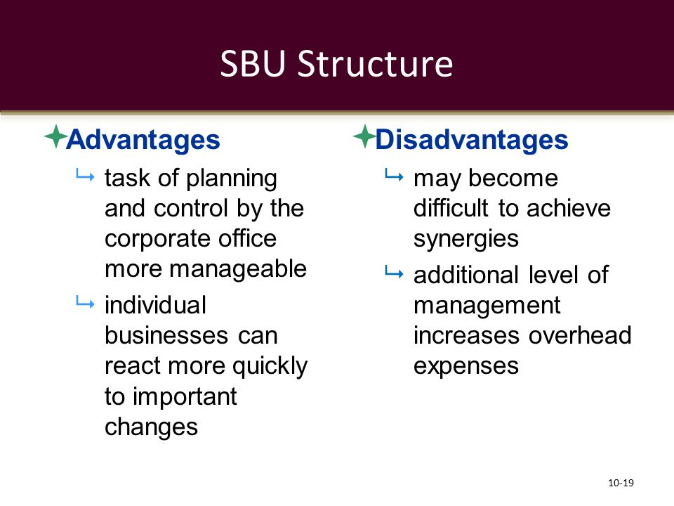 SBU Structure Advantages Disadvantages