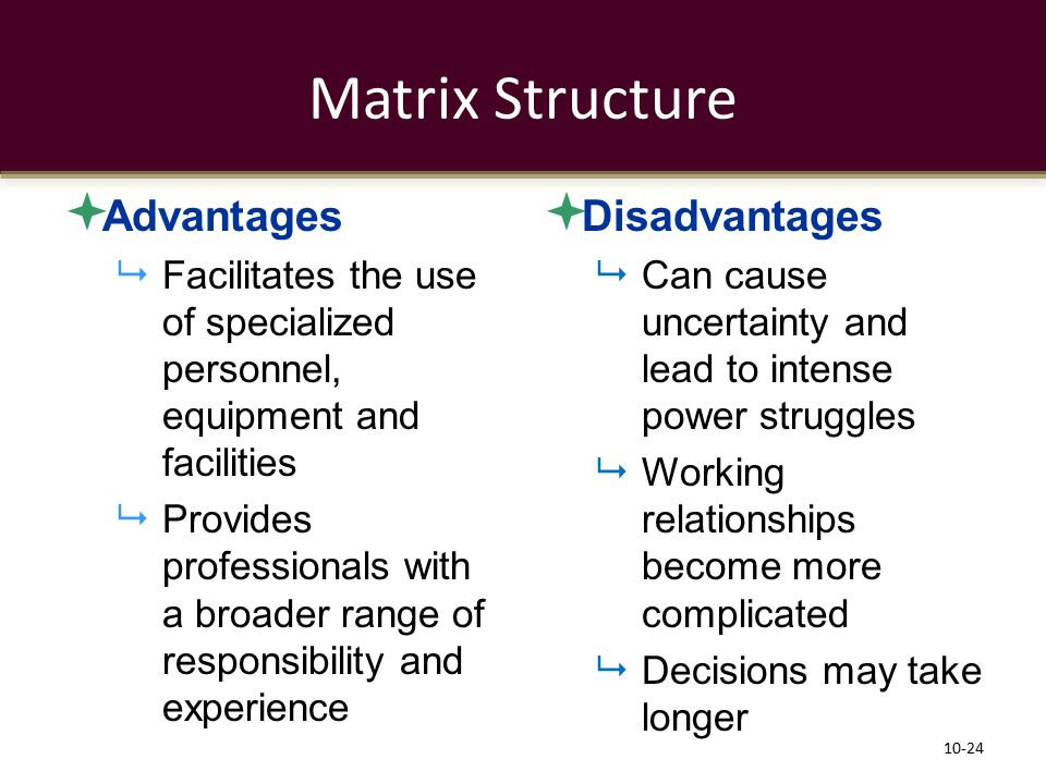 Matrix Structure Advantages Disadvantages