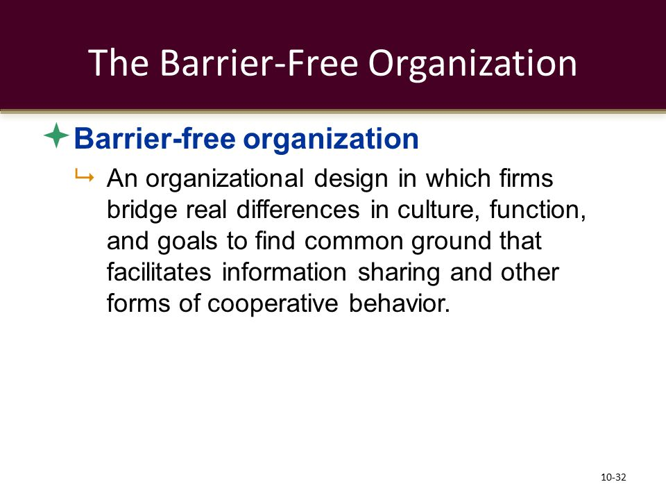 The Barrier-Free Organization