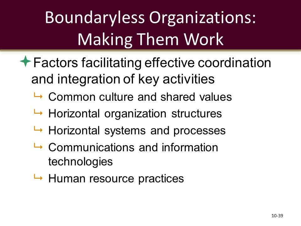 Boundaryless Organizations: Making Them Work