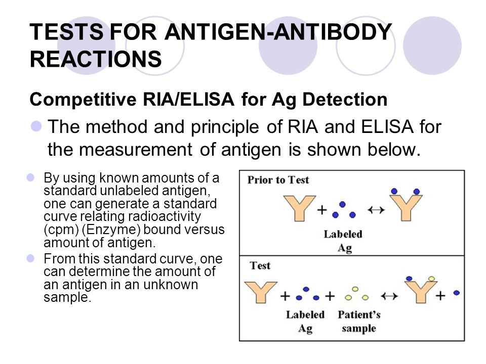 Antigen Antibody Reaction Elisa Immunology TEACHING OB...