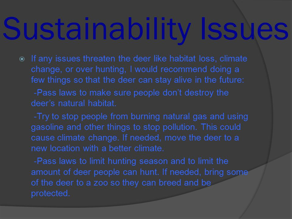 new balance sustainability issues A practitioner's view of sustainability reporting: challenges and solutions  view of sustainability reporting: challenges  sustainability issues, and new.