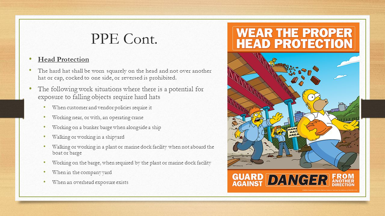PPE Cont. Head Protection