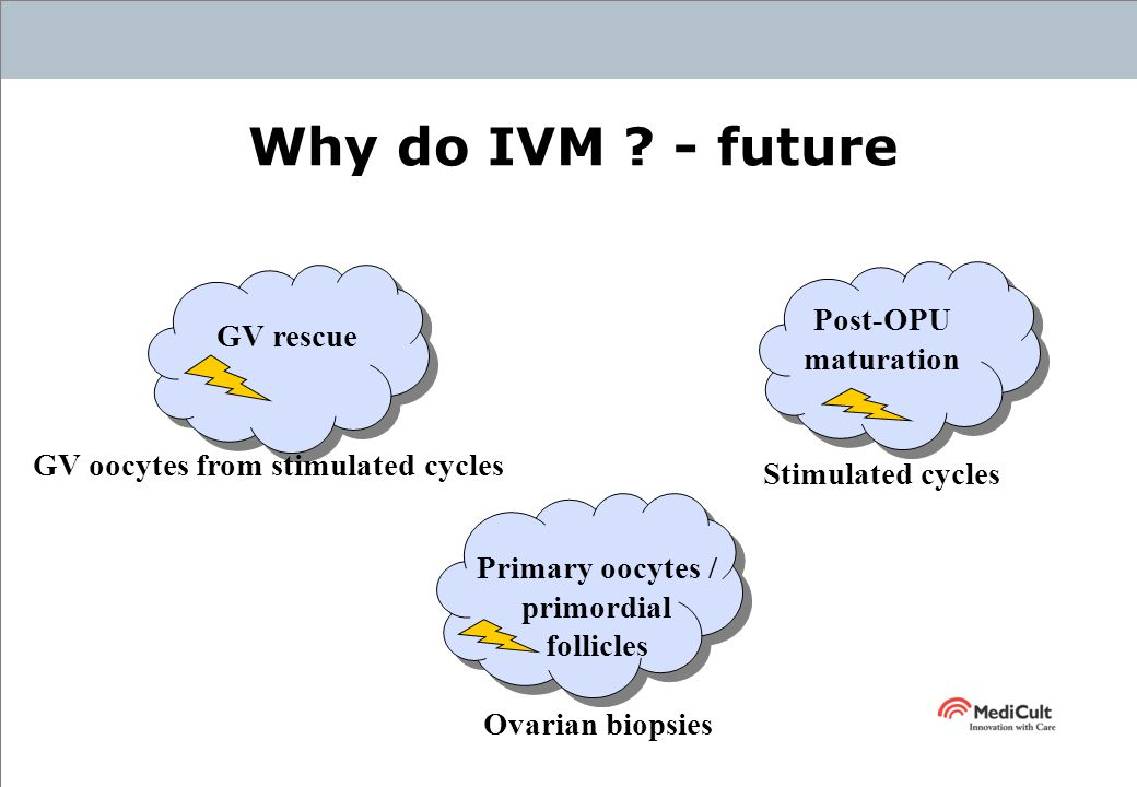 In Vitro Maturation Of Oocytes