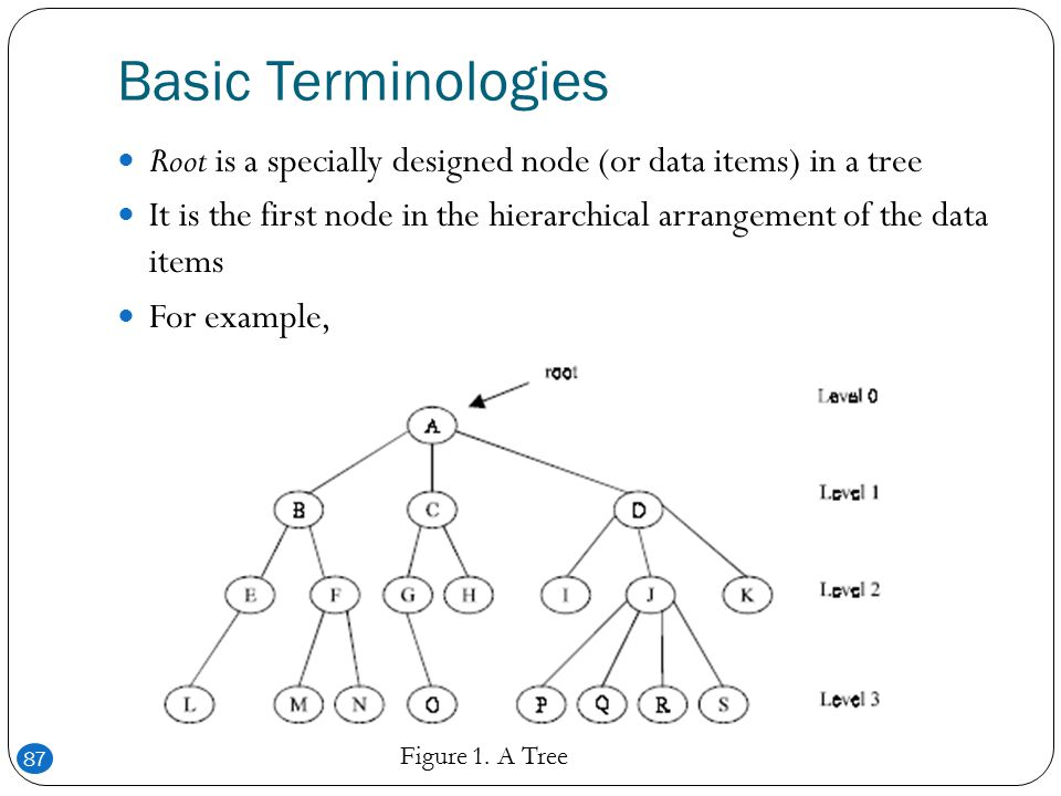 Algorithms and Data Structures - ppt download