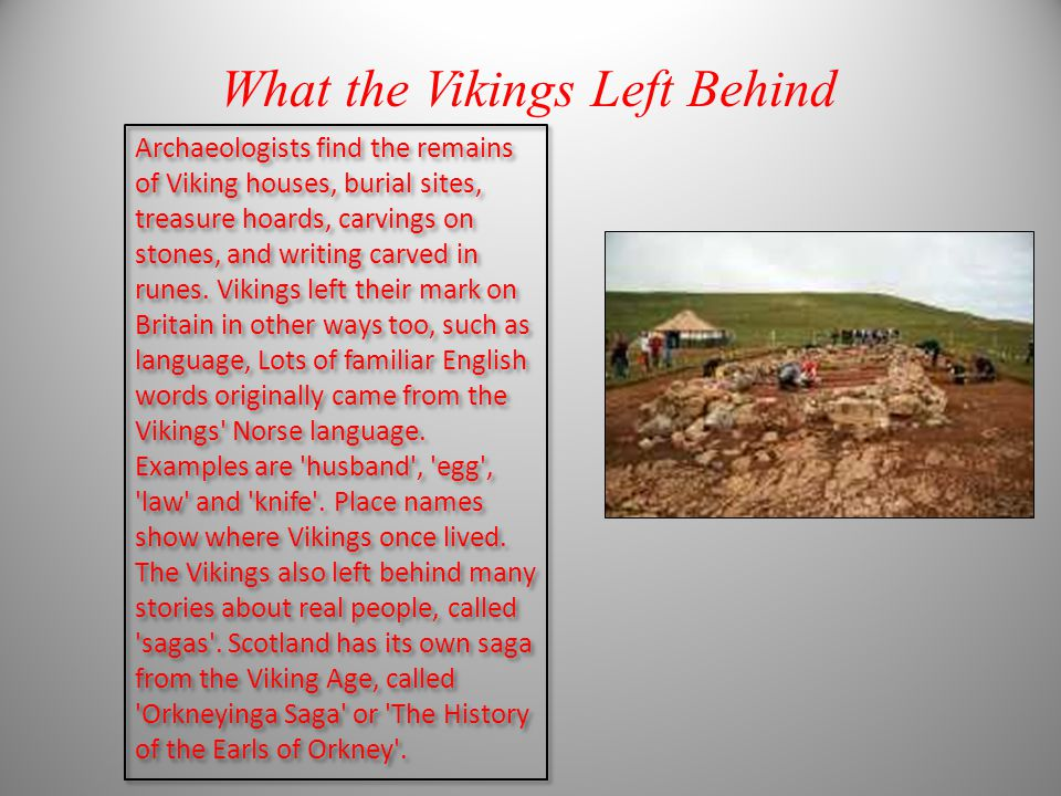 Viking facts by sam clayton ppt video online download
