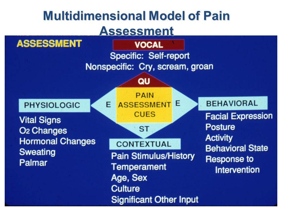 Multidimensional Model of Pain Assessment