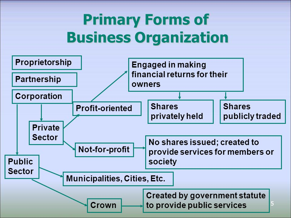profit oriented organization Private organizations are able to use their revenue from sales and investments to   skills in addition to the business-oriented skills of a private sector manager.