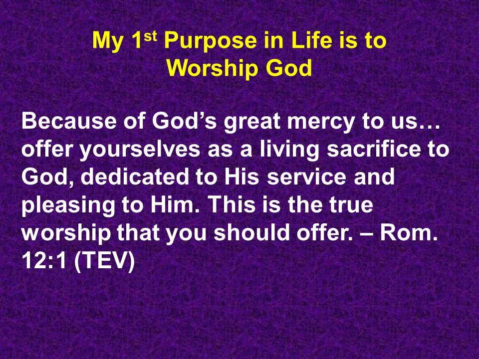 My 1st Purpose in Life is to Worship God