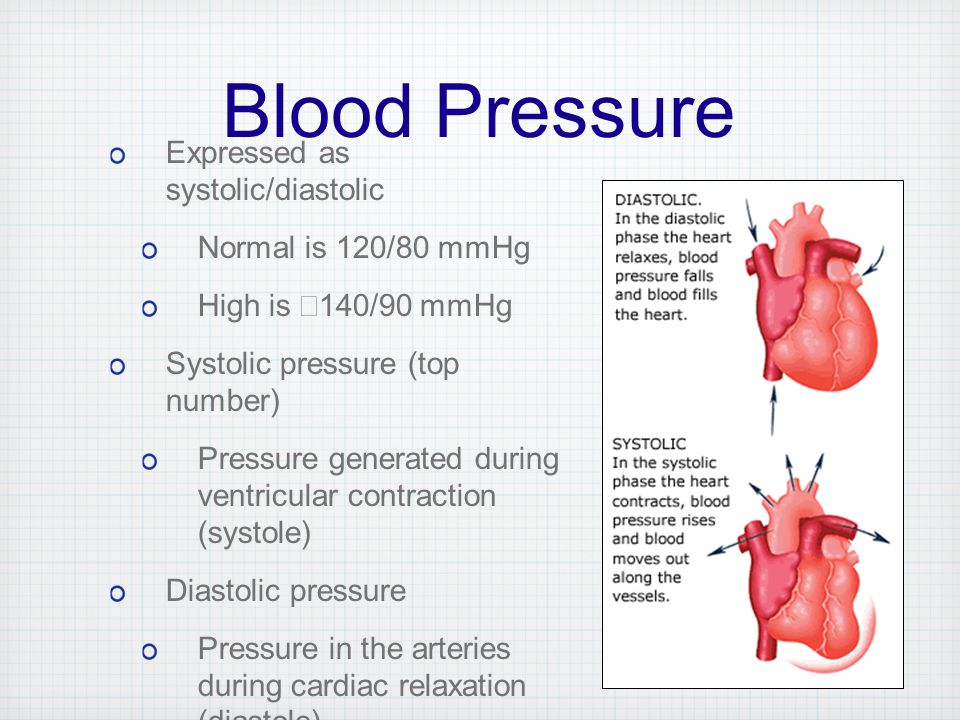 exercise 5 cardiovascular dynamics answers Physioex exercise 5 answers search solved by ramonistry exercise 6: cardiovascular physiology: activity 5 : examining the effects of various ions on by ramonistry 18-5-2013 physio ex answers to manual verion.
