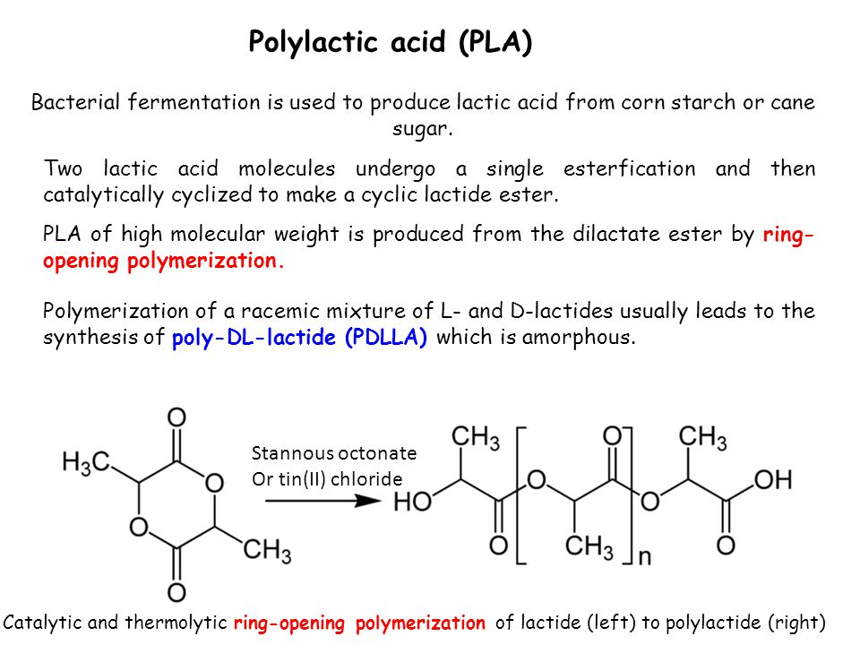 organism used to synthesise polylactic acid Corn feedstock for poly lactic acid  the dextrose is isolated by crystallization or  used as a liquid  glycolysis is the first energy-yielding step in metabolism of d- glucose by plants, animals and many microorganisms.