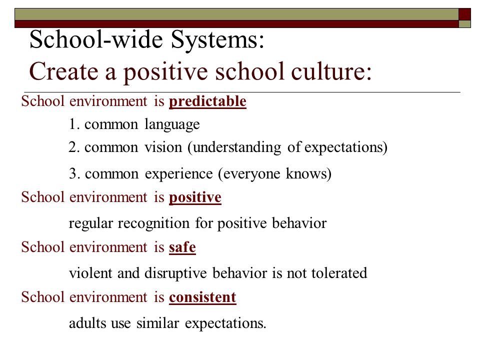School-wide Systems: Create a positive school culture: