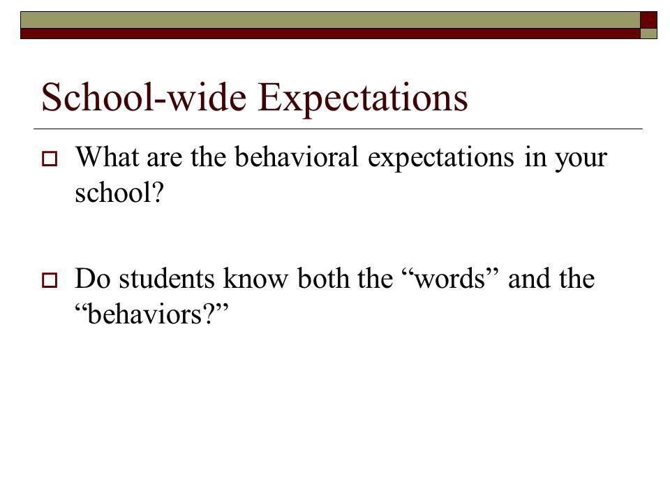 School-wide Expectations