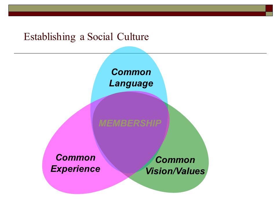 Establishing a Social Culture