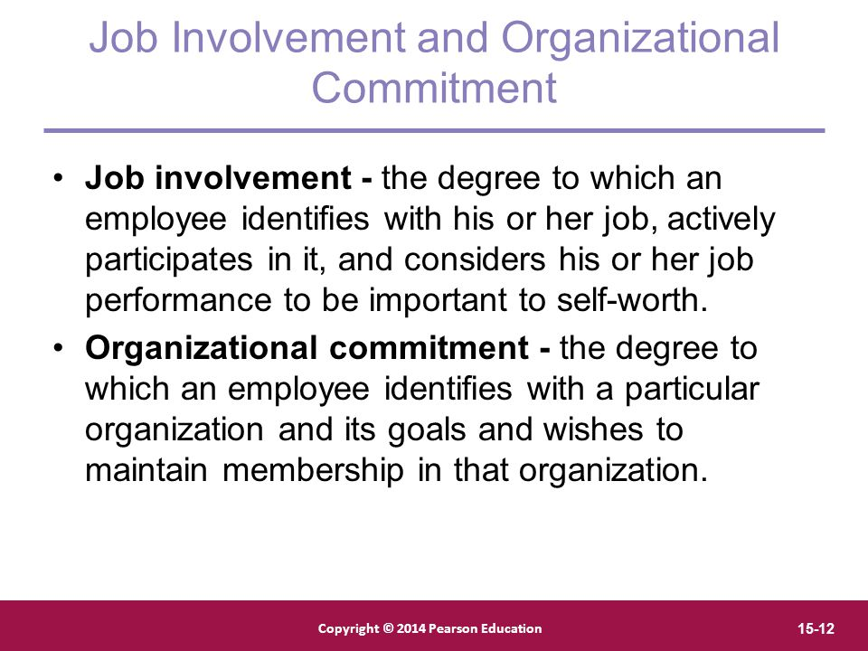 Job Involvement and Organizational Commitment