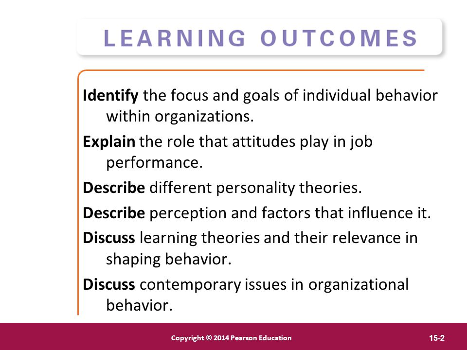 Identify the focus and goals of individual behavior within organizations.