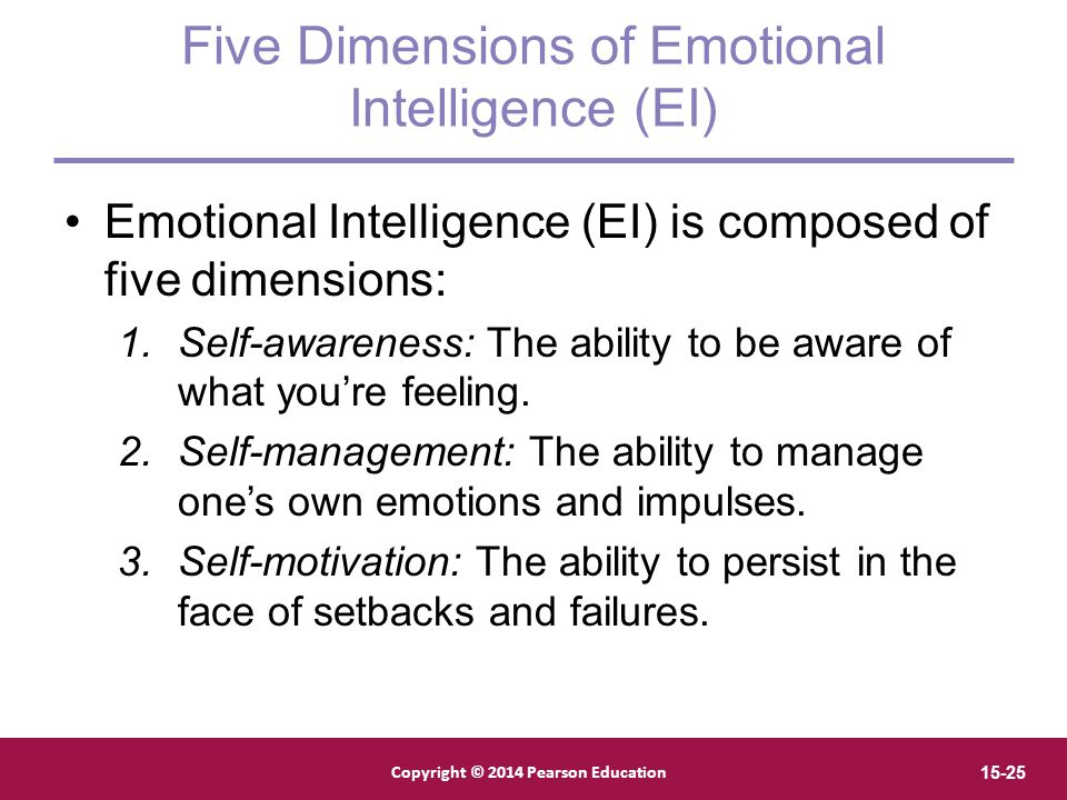 Five Dimensions of Emotional Intelligence (EI)
