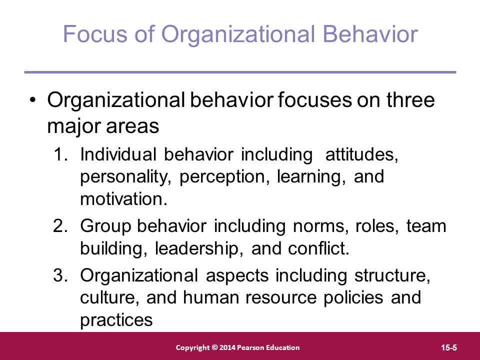 foundations of individual behavior ppt  focus of organizational behavior