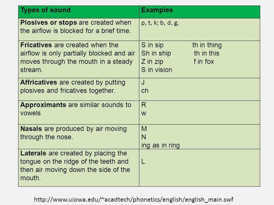 Types of phonetics Term paper Example - July 2019