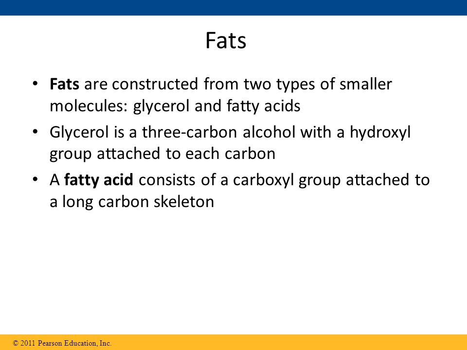 Fats Fats are constructed from two types of smaller molecules: glycerol and fatty acids.
