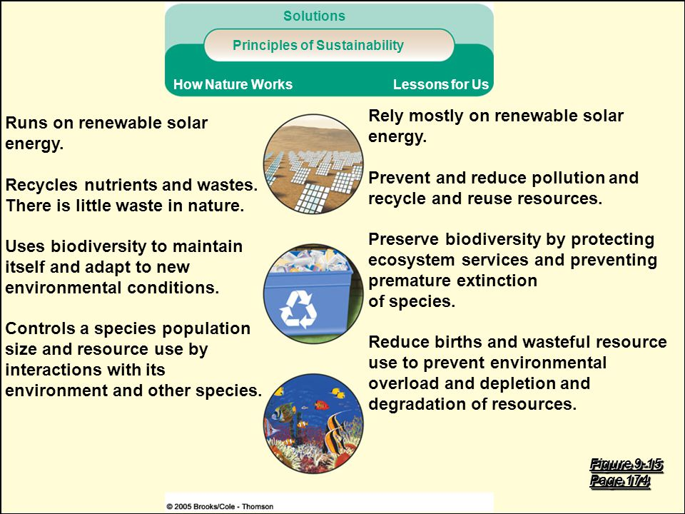 Principles of Sustainability