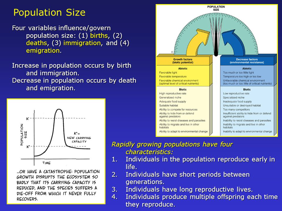 Population Size Four variables influence/govern population size: (1) births, (2) deaths, (3) immigration, and (4) emigration.