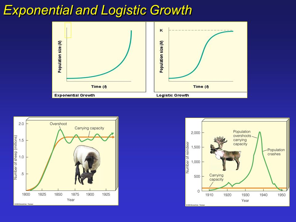 Exponential and Logistic Growth