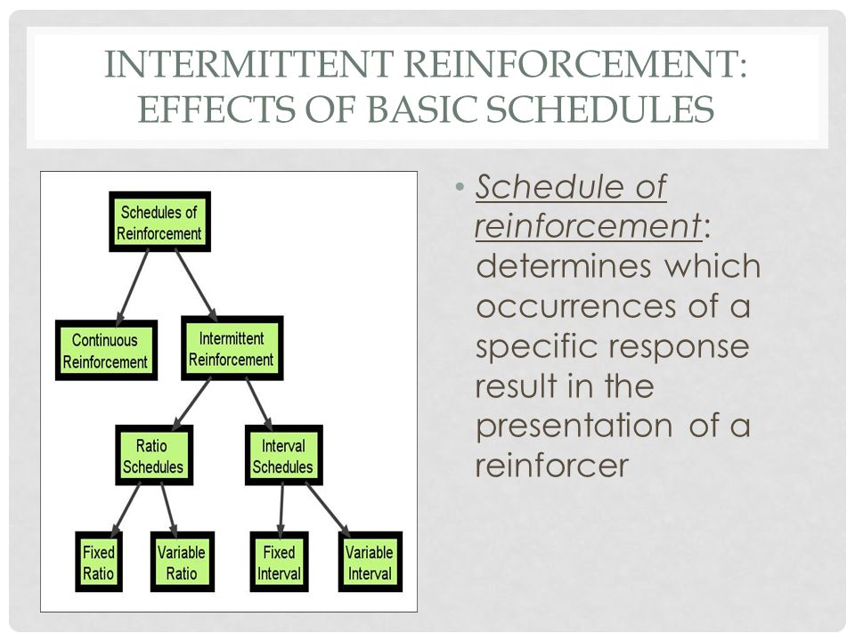 INTERMITTENT REINFORCEMENT: EFFECTS OF BASIC SCHEDULES
