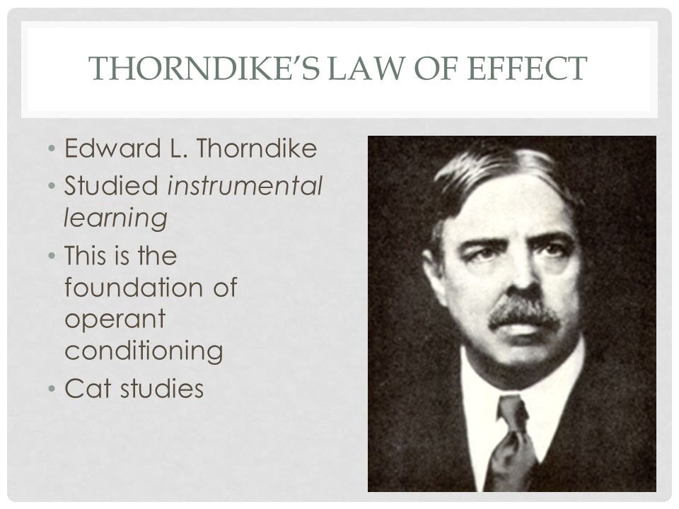THORNDIKE'S LAW OF EFFECT