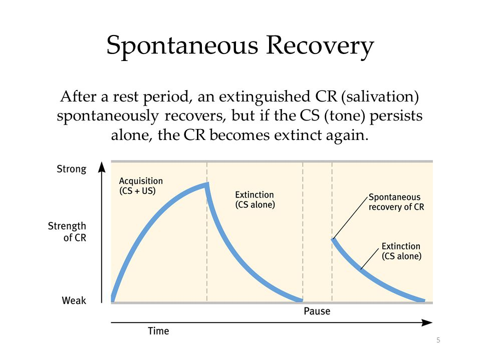 example of spontaneous recovery Spontaneous recovery is a phenomenon of learning and memory that was first named and described by ivan pavlov in his studies of classical  for example, cocaine .