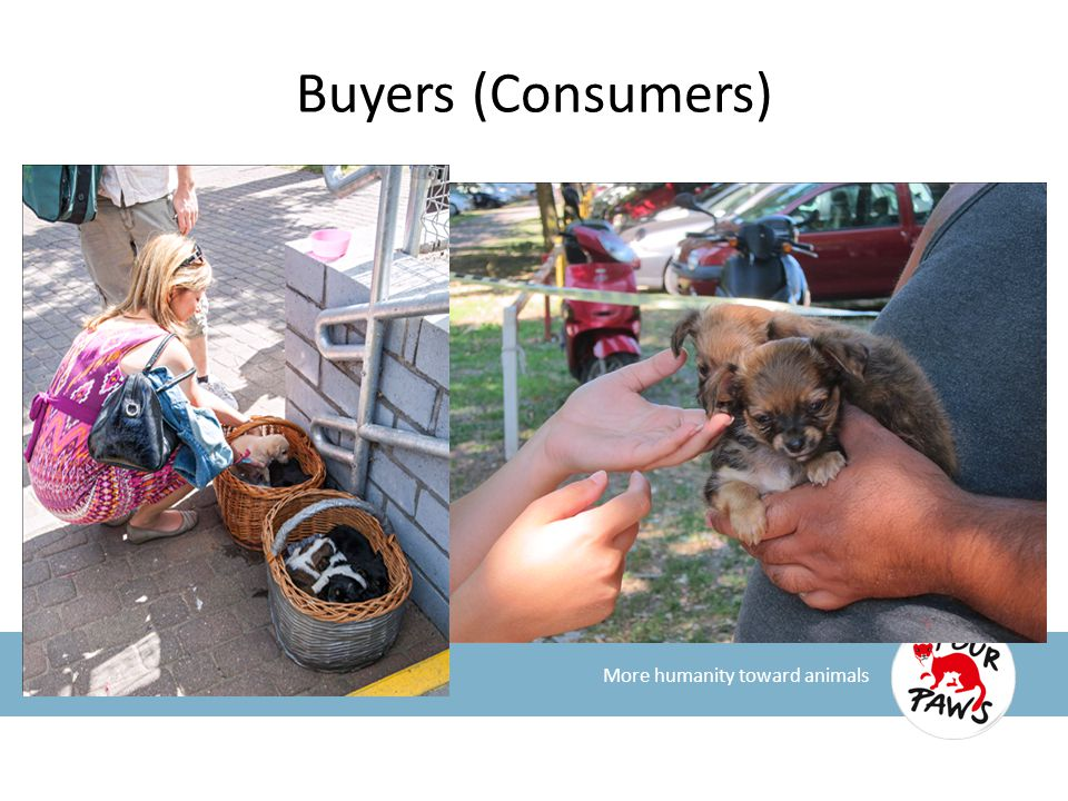 Buyers (Consumers) More humanity toward animals
