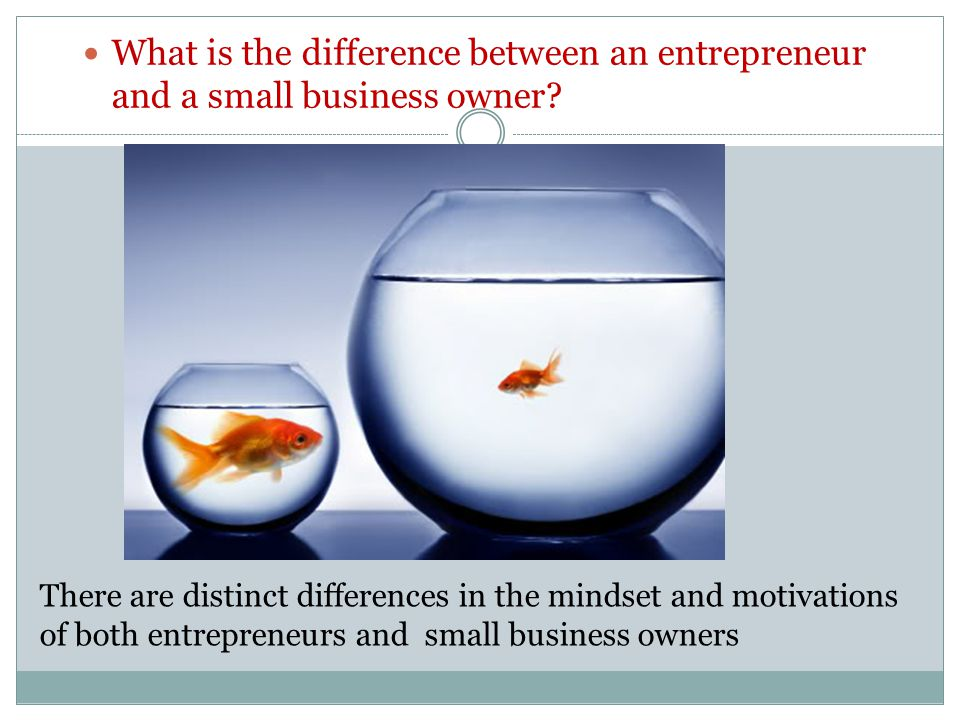 What is the difference between an entrepreneur and a small business owner