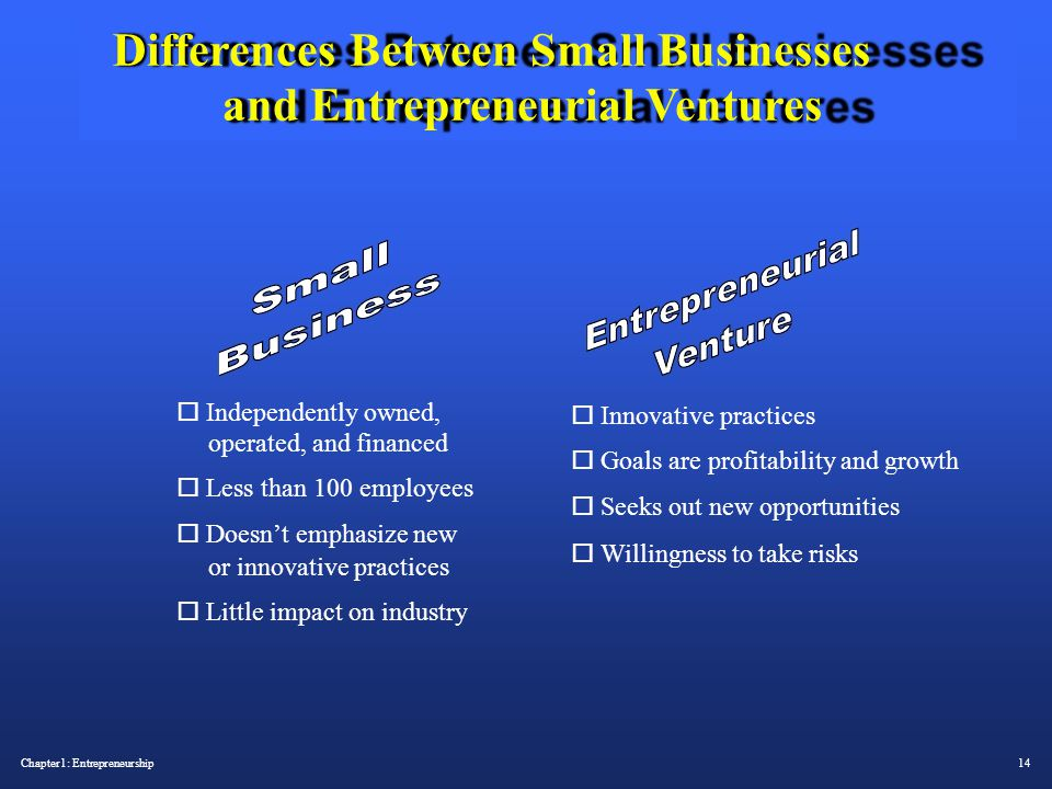 what are the differences between entrepreneurial ventures and small businesses You currently work for a consultancy firm that provides advice and market intelligence to small businesses  entrepreneurial ventures  differences that small,.
