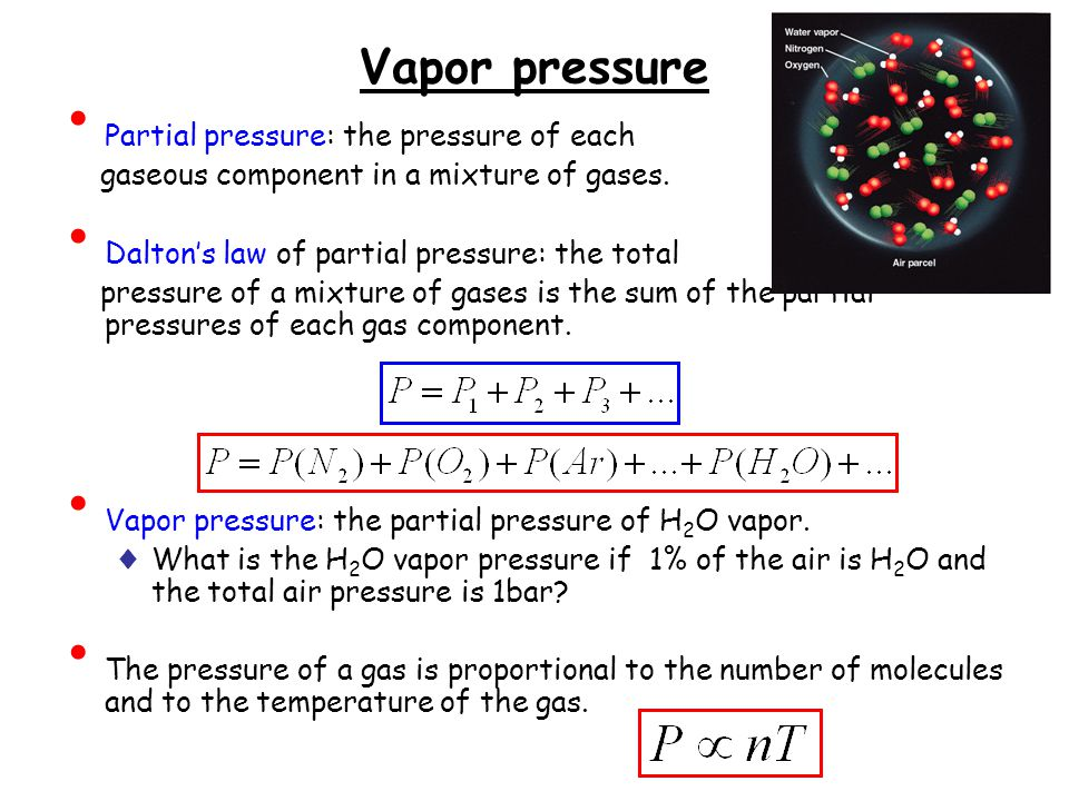 Vapor pressure Partial pressure: the pressure of each