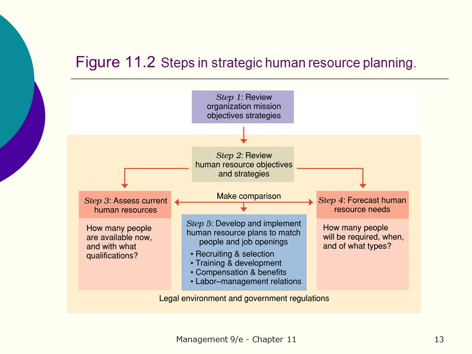 Figure 11.2 Steps in strategic human resource planning.