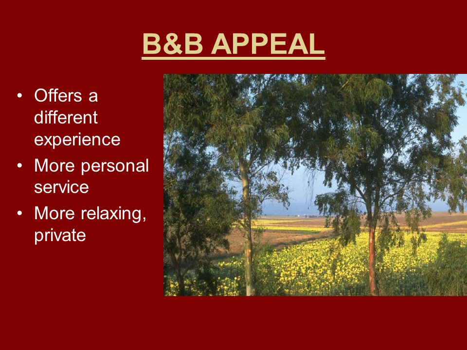 B&B APPEAL Offers a different experience More personal service