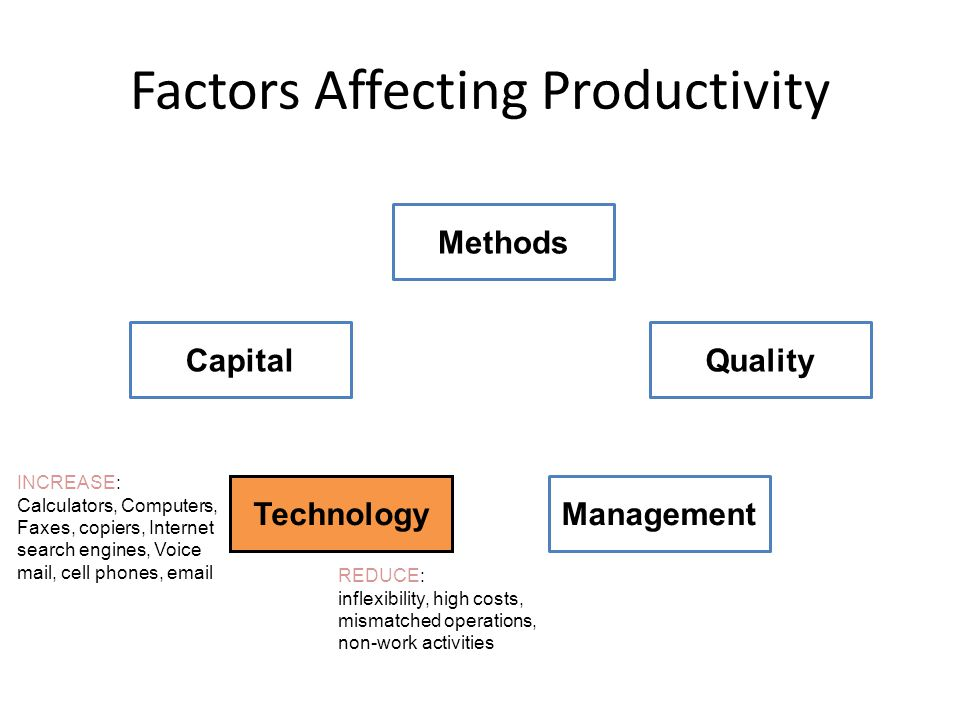 5 Factors That Affect Your Employee's Productivity