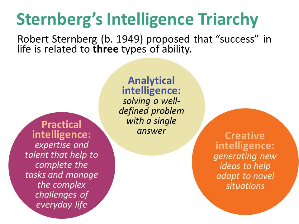 an introduction to the life of robert sternberg The triarchic theory of intelligence was formulated by robert sternberg in the  1980s  the tri-archic theory by sternberg categorized intelligence into three   before sternberg, general intelligence was the idea that dominated most of   introduction skinner's theory definition and concepts examples.
