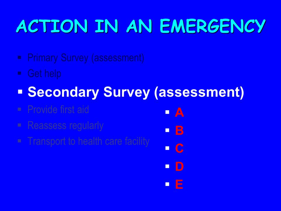 ACTION IN AN EMERGENCY Secondary Survey (assessment) A B C D E