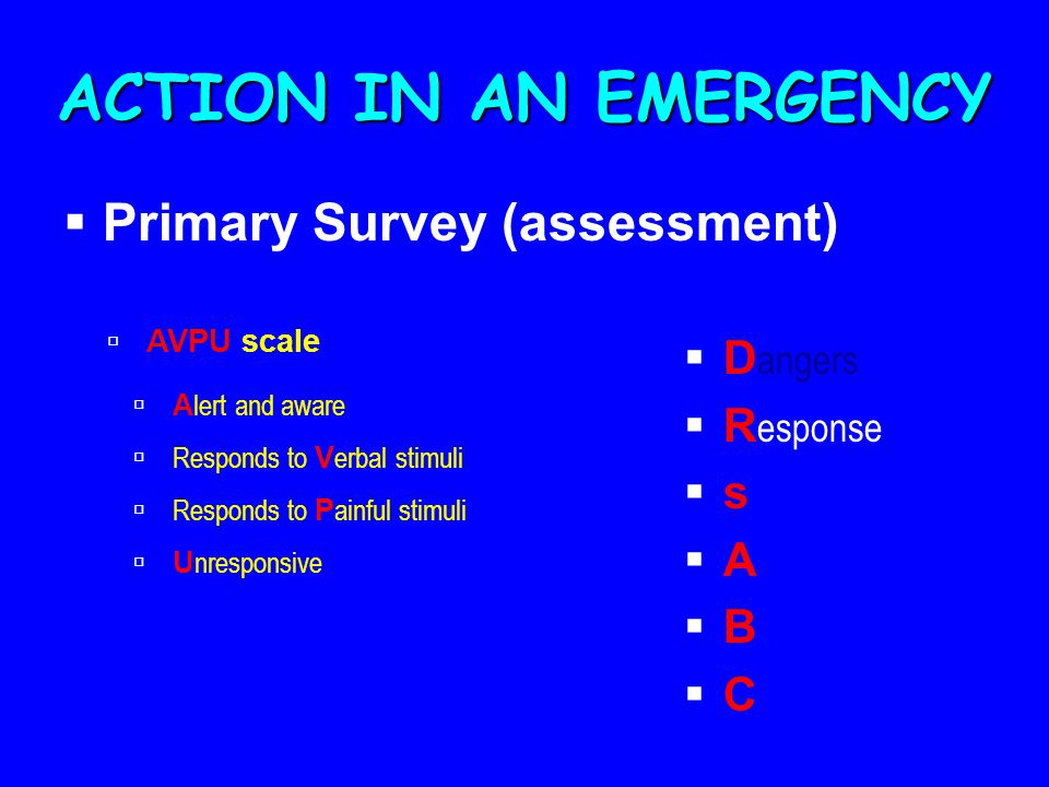 ACTION IN AN EMERGENCY Primary Survey (assessment) Dangers Response s