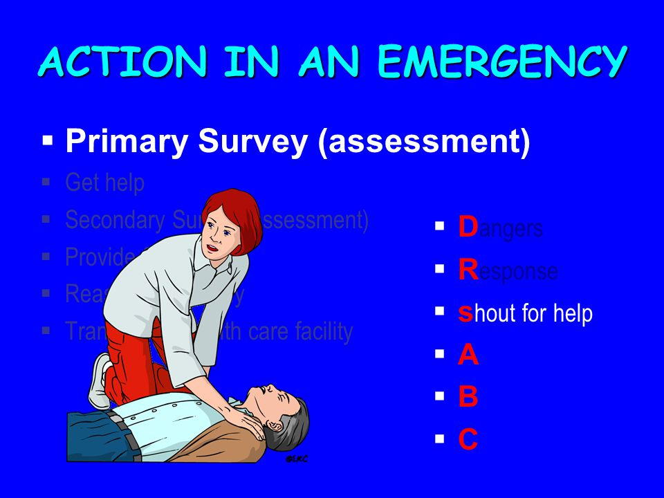 ACTION IN AN EMERGENCY Primary Survey (assessment) Dangers Response