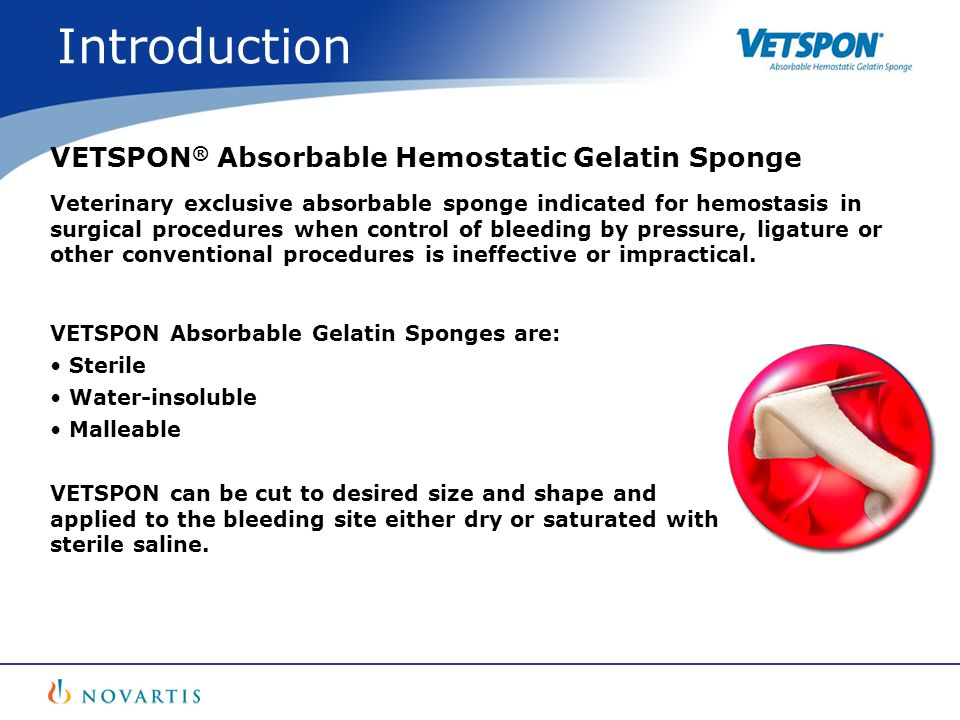 Introduction VETSPON® Absorbable Hemostatic Gelatin Sponge