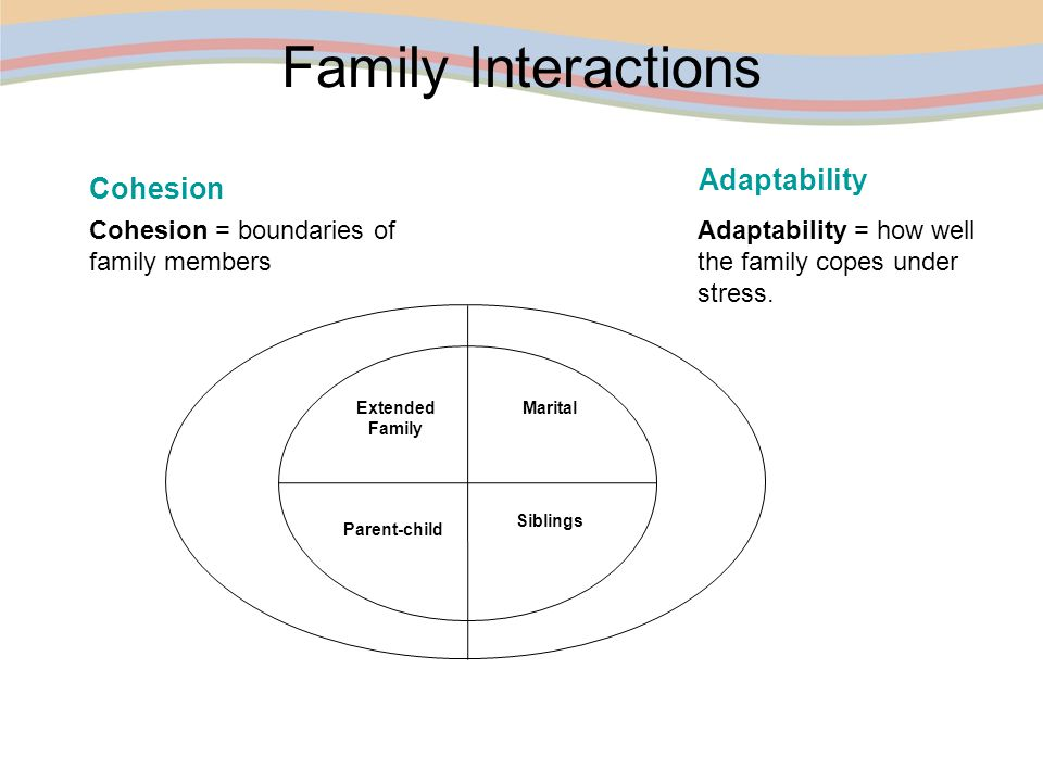 The Role Of Families During Transition Planning Ppt Download