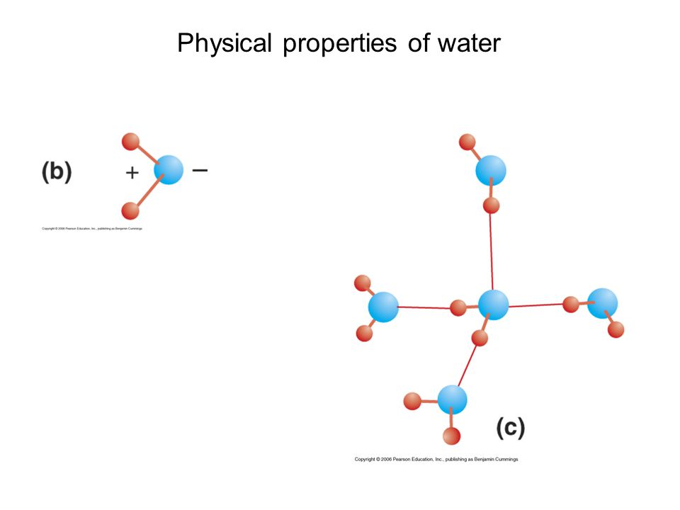 the physical properties of water during hydrogen bonding This page describes how the physical properties of substances having molecular structures varies with the type of intermolecular attractions - hydrogen bonding or van der waals forces.
