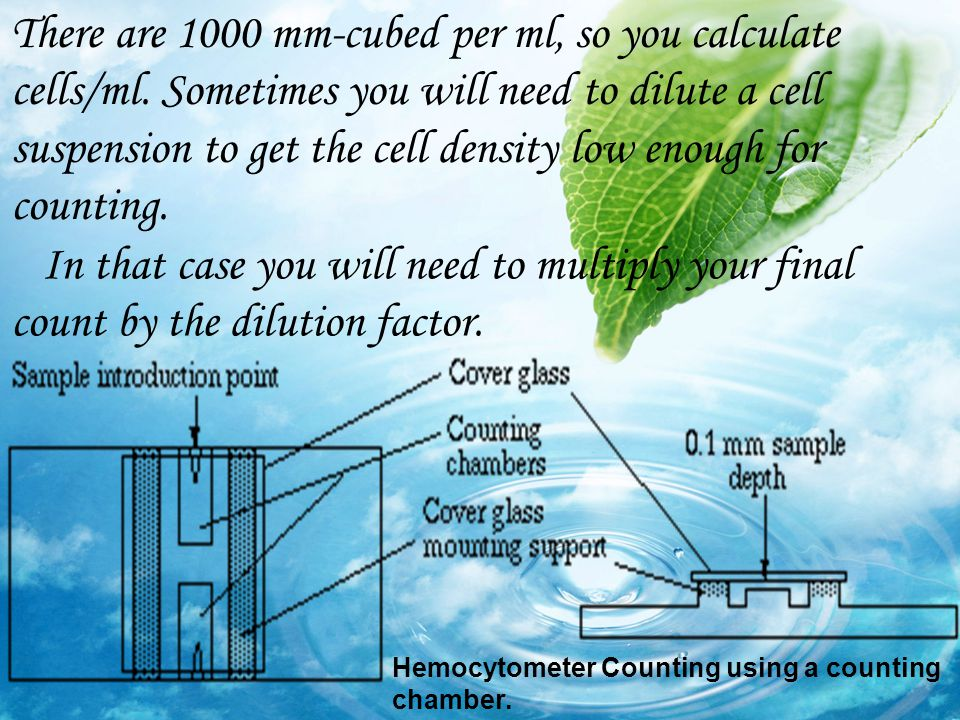 There are 1000 mm-cubed per ml, so you calculate cells/ml