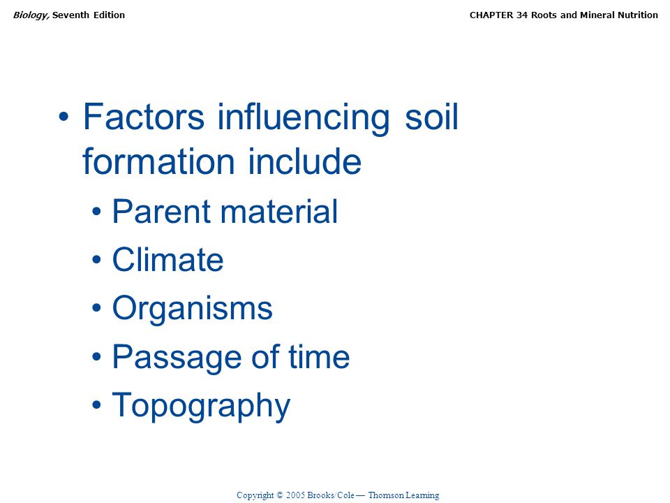 Roots and mineral nutrition ppt video online download for Soil forming factors