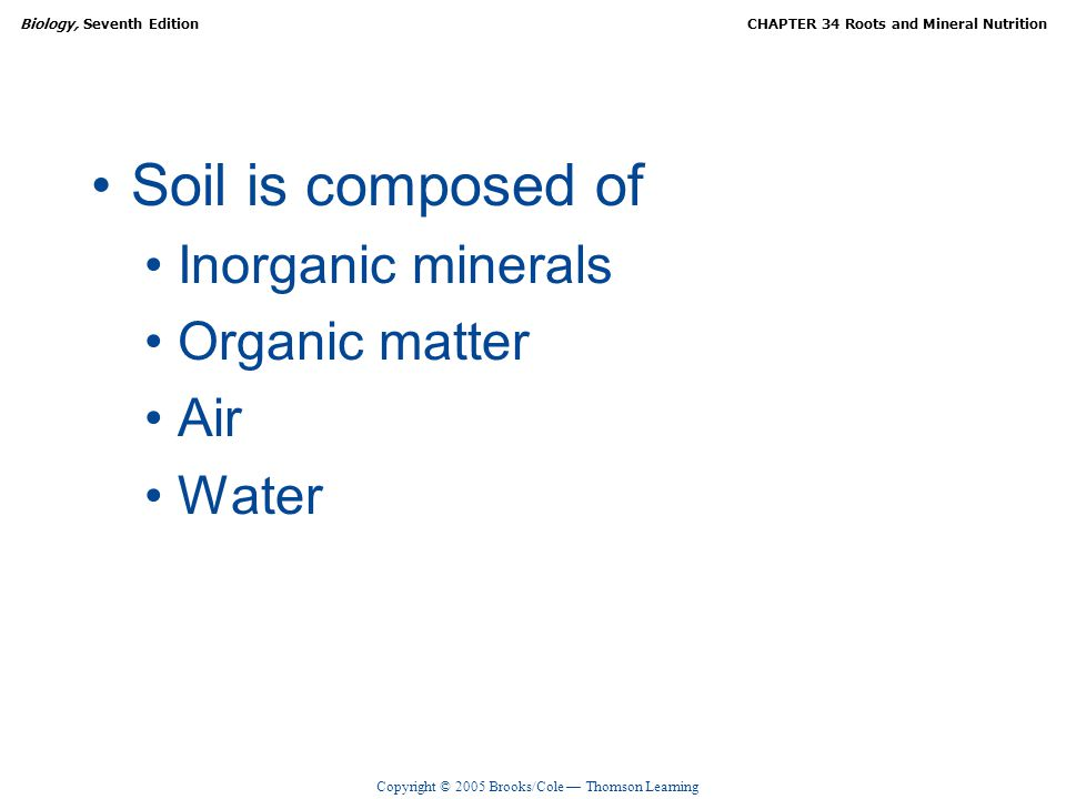 Roots and mineral nutrition ppt video online download for What is dirt composed of
