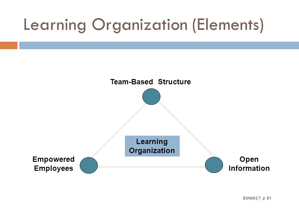Learning Organization (Elements)