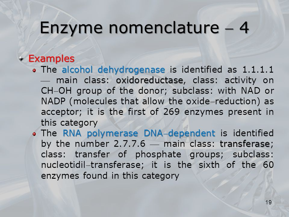Enzyme nomenclature  4 Examples