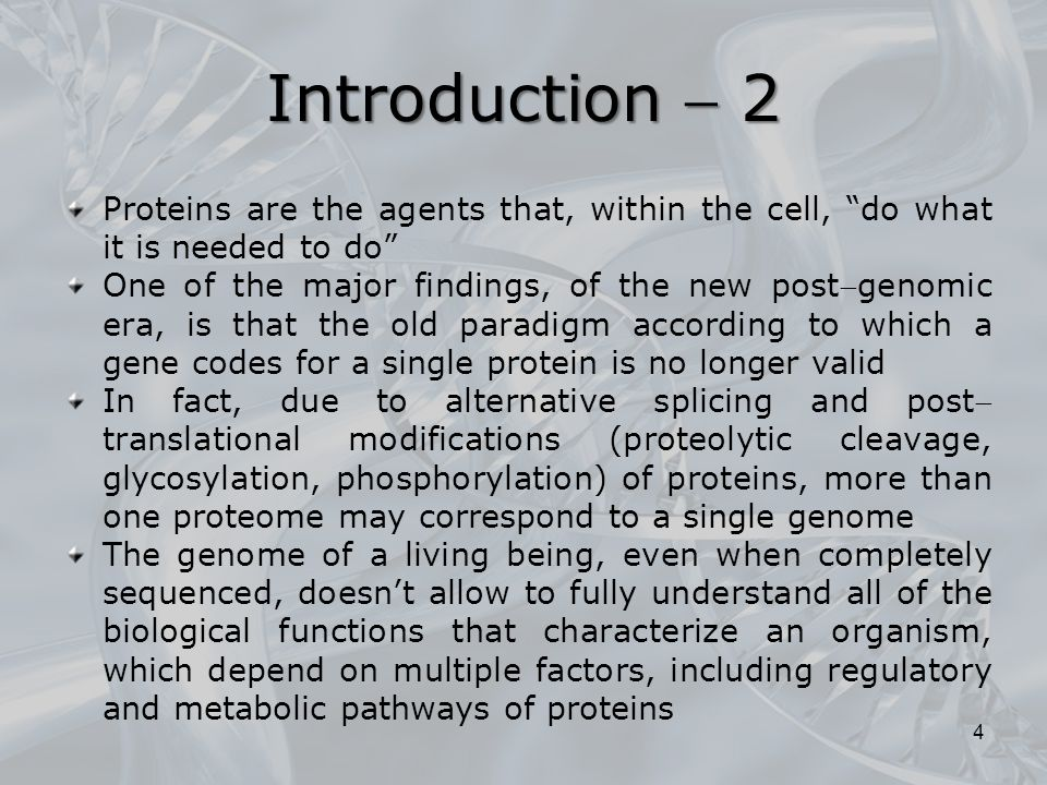 Introduction  2 Proteins are the agents that, within the cell, do what it is needed to do